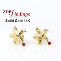14K Solid gold starfish with Ruby post earrings